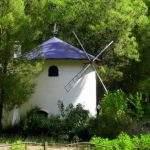 Casa Molino Viento Pehuenco