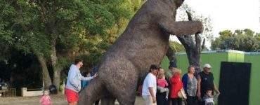 Megaterio y Gliptodonte de la Plaza Carrasco en Pehuen Có